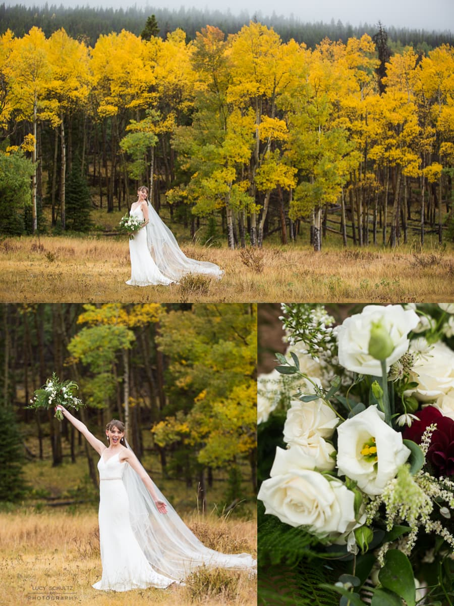 RockyMountainNationalParkFallWedding6